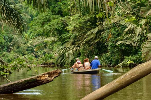 Costa Rica Nature - Photo