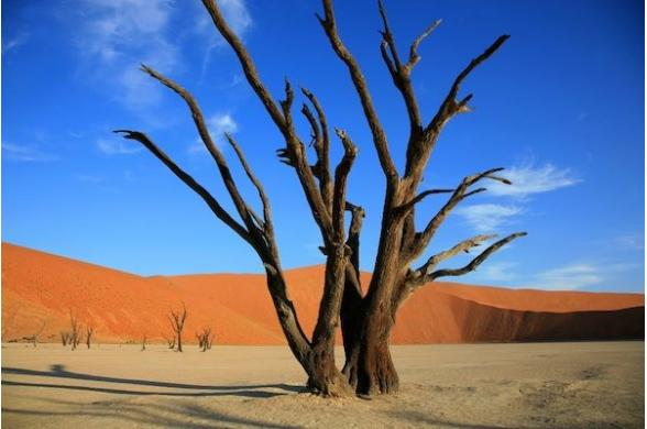 Couleurs De Namibie - Photo