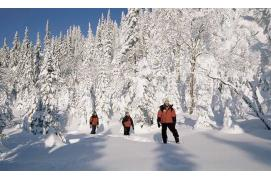 circuit Canada Indispensable Canada Hiver -
