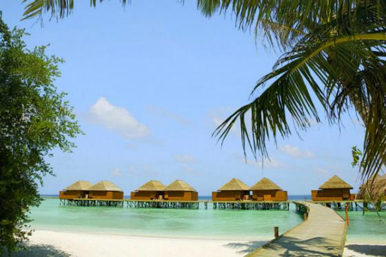sejour Maldives - Hôtel Veligandu Island Resort