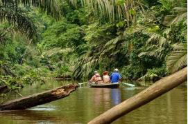 circuit Costa rica Splendeurs Du Costa Rica & Extension Playa Tambor -