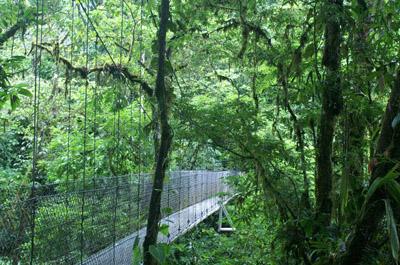 Tr�sors du Costa Rica