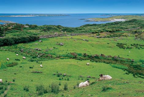 Tresors d'Irlande