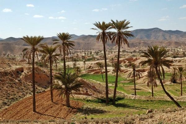 Le Sud Tunisien en 4x4