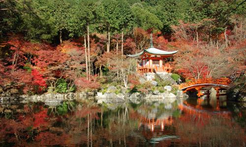 1ers Regards Japon