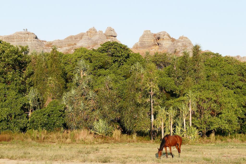 Madagascar : Par la mythique route du Sud