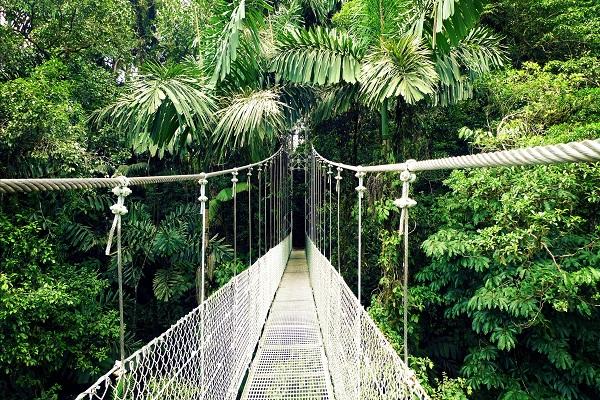 Beautés du Costa Rica
