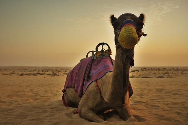 Escapade � Dubai