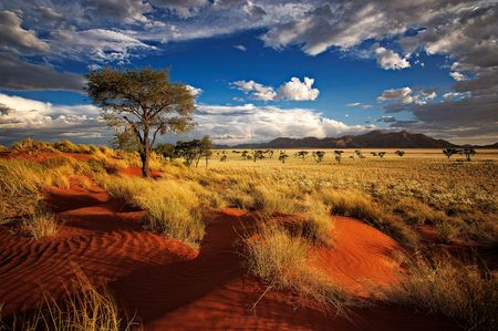 circuit Namibie Splendeurs De Namibie & Extension Fish River Canyon 14j/11n - 2021 -