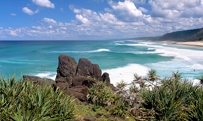 Confidentiel Australie + Australia's Nature Coast + Grande Barriere Corail - Photo